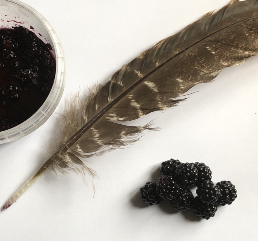 Quill and Blackberry Ink